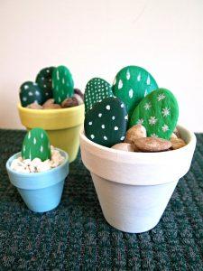 kaktusss